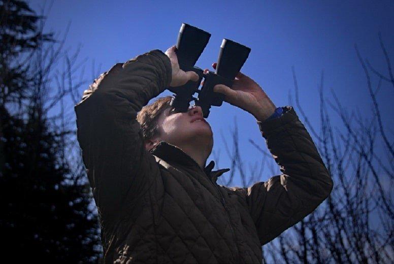 Best Binoculars For Astronomy Beginners