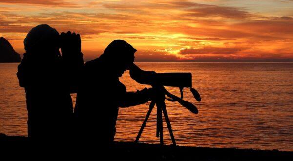 Best Tripod for Binoculars